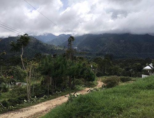 Caffeine Limited Go To Origin – The Honduras Trip