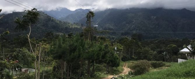 Caffeine Ltd Honduras Farm Origin Visit